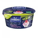 Jogurt auf Himbeere Granatapfel