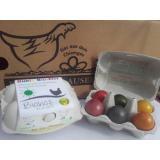 Eier Bunte-Brotzeiteier 6er gefärbt