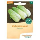 Saatgut Salat Zuckerhut