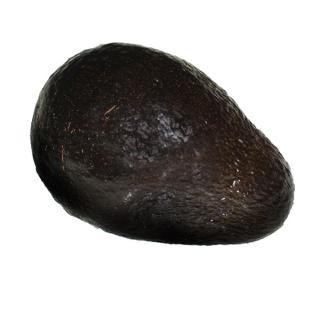 "Avocado "" Hass """