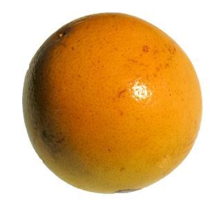 Grapefruit klein