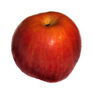 "Apfel "" Red Free "" neue Ernte"