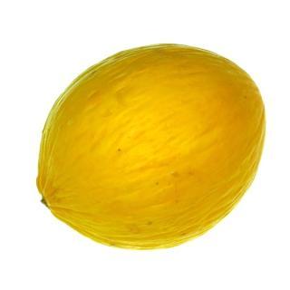 "Melone "" Canari """