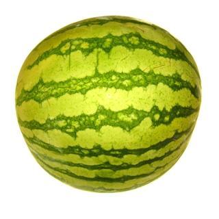 Melone Wasser-, mini - ca. 2 kg -