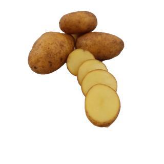 """Kartoffeln """" Ditta """" fk"""