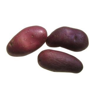 Kartoffeln Laura/Raya rotschalig  vfk