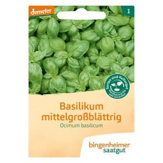 Saatgut Kräuter Basilikum