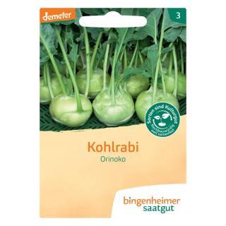 Saatgut Kohlrabi weiß Noriko